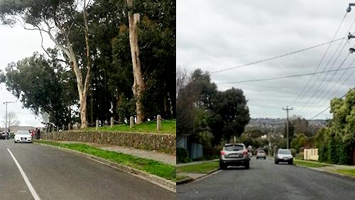 Meyrick Crescent Viewbank