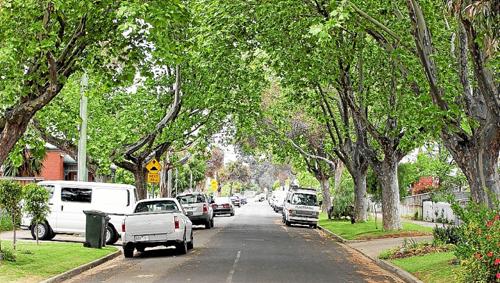 The street outside 46 Robert Street, Spotswood