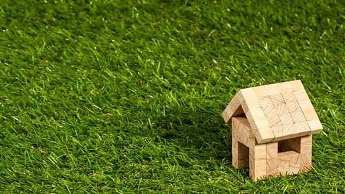 home-grass